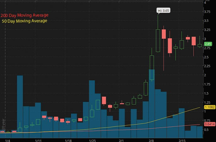 best penny stocks to watch list Kaival Brands Innovations Group Inc. KAVL stock chart