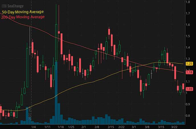 penny stocks to watch right now SeaChange International Inc. SEAC stock chart