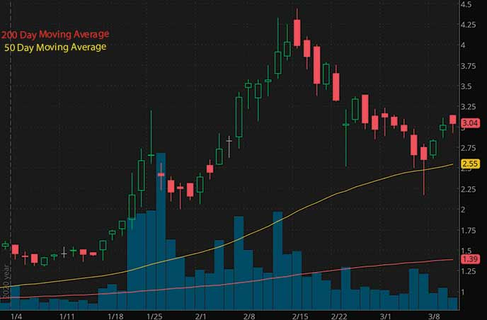 psychedelic penny stocks to buy watch Seelos Therapeutics SEEL stock chart